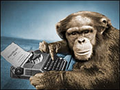 Chimp_at_typewriter